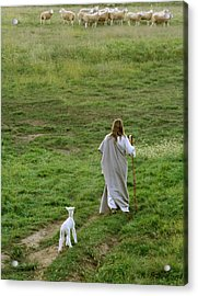 Green Pastures Acrylic Print by Vienne Rea