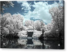 Green River Ir Acrylic Print by Amber Flowers