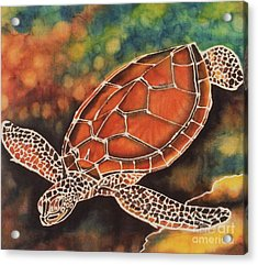 Green Sea Turtle Acrylic Print by Jacqueline Phillips-Weatherly