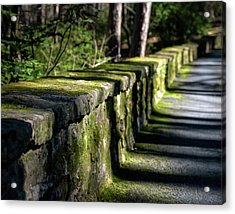 Acrylic Print featuring the photograph Green Stone Wall by James Barber