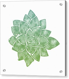 Green Succulent 1- Art By Linda Woods Acrylic Print by Linda Woods