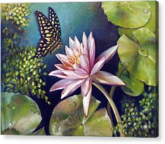 Green Tailed Jay Butterfly And Water Lily Acrylic Print