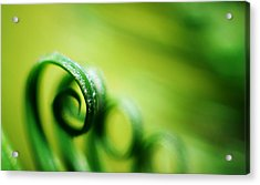 Green Tides Acrylic Print