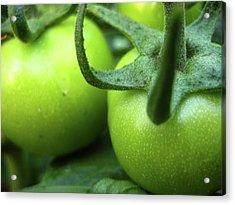 Green Tomatoes No.3 Acrylic Print by Kamil Swiatek