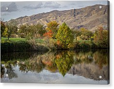 Green Tree Pond Reflection Acrylic Print