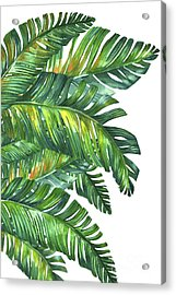 Green Tropic  Acrylic Print by Mark Ashkenazi