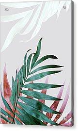 Green Tropical Leaves, Fern Plant Acrylic Print