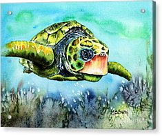 Green Turtle Acrylic Print by Maria Barry