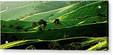 Green Valley Acrylic Print by Az Jackson