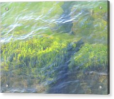 Acrylic Print featuring the photograph Green Water by Beth Akerman