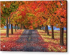 Greenbluff Autumn Acrylic Print