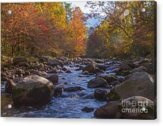 Greenbriar Creek Acrylic Print