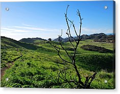Acrylic Print featuring the photograph Greenery In The Hills Landscape by Matt Harang