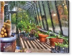 Greenhouse - In A Greenhouse Window  Acrylic Print by Mike Savad