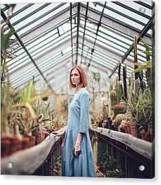 Greenhouse Acrylic Print by Dasha Pears