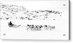 On The Trail To Home Acrylic Print by Janet Burdon