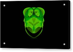 Greenowl - Da Acrylic Print by Leonardo Digenio