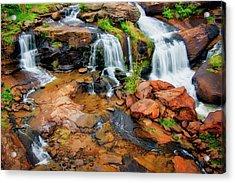 Greenville's Reedy River Falls, South Carolina Acrylic Print