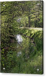 Greenway Acrylic Print by Alan Raasch