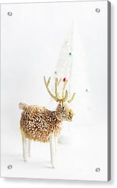 Acrylic Print featuring the photograph Greetings From North Pole by Elena Nosyreva