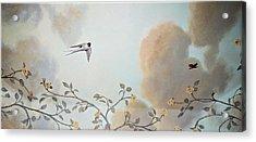 Grey Cloudy Flight By Dove Acrylic Print