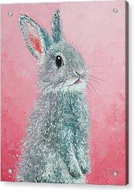 Grey Easter Bunny Acrylic Print by Jan Matson