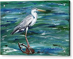 Grey Heron Of Cornwall -painting Acrylic Print