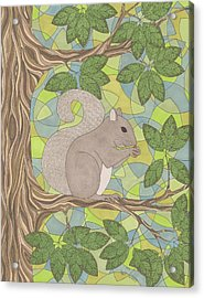 Grey Squirrel Acrylic Print by Pamela Schiermeyer