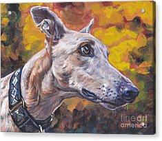Greyhound Portrait Acrylic Print by Lee Ann Shepard