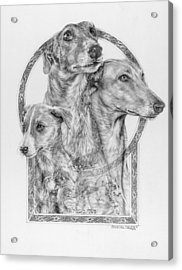 Greyhound - The Ancient Breed Of Nobility - A Legendary Hidden Creation Series Acrylic Print