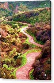 Griffith Park Trail Acrylic Print