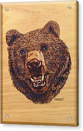 Acrylic Print featuring the pyrography Grizzly 5 by Ron Haist