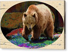 Acrylic Print featuring the digital art Grizzly Bear With Enhanced Background by Kae Cheatham
