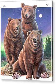 Grizzly Bears In Starry Night Acrylic Print by Hans Droog