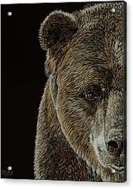 Grizzly Eye Acrylic Print