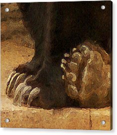 Grizzly Paws Acrylic Print