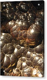 Groltch Acrylic Print by Jez C Self