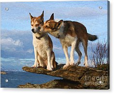 Grooming Dogs Acrylic Print by Garland Johnson