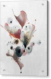 Growing 14030092fy Acrylic Print