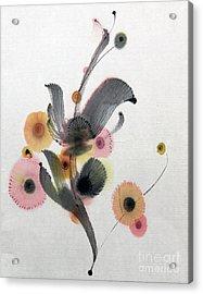 Growing 14030093fy Acrylic Print