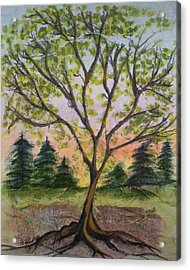 Growth Acrylic Print by CB Woodling