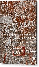 Grunge Background Acrylic Print by Carlos Caetano