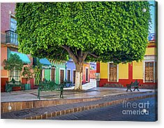 Guanajuato Small Park Acrylic Print