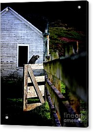 Guardian At The Gate Acrylic Print by Wingsdomain Art and Photography