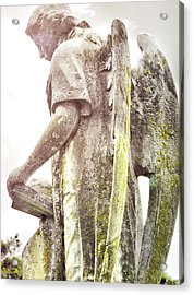 Guardian Of The Soul Acrylic Print by JAMART Photography
