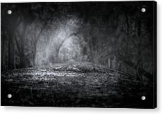 Guardian Of The Forest Acrylic Print by Mark Andrew Thomas