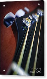 Guitar Head Stock Acrylic Print by Carlos Caetano