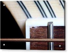 Guitar String Acrylic Print by Mizanur Rahman