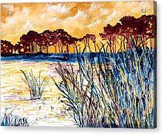 Gulf Coast Seascape Tropical Art Print Acrylic Print by Derek Mccrea