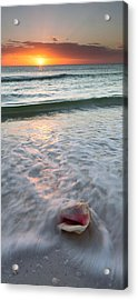 Acrylic Print featuring the photograph Gulf Coast Sunset  by Patrick Downey